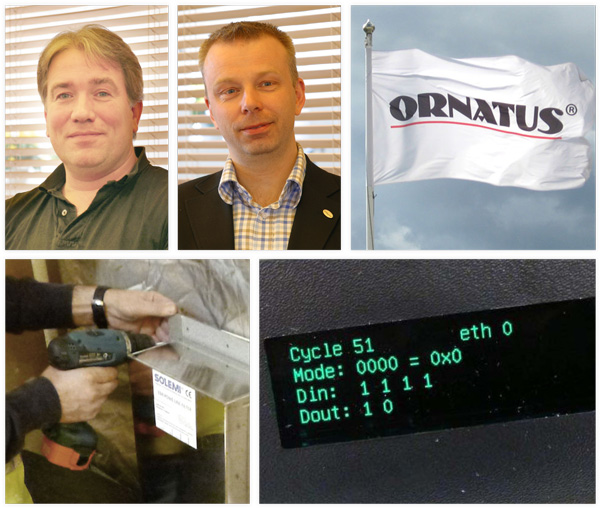 About_Ornatus